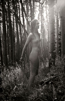 """New Mexico"", Susie, afternoon, aspen, light, nude, sepia, sequence, toned"