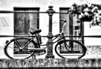 "rain, bicycle, flowers, railing, iron, B&W, artistic, ""soft focus"", Ghent, Belgium, fallen, chained, abandoned"