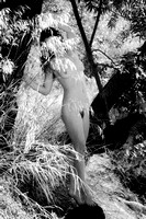 "nude, ballet, water, trees, B&W, ""Katy T"", toned"